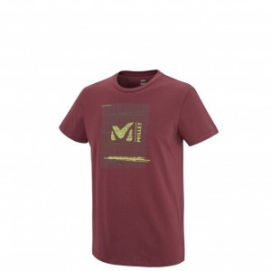 T-shirt technique Homme RISE UP Millet